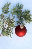 Red Christmas decoration on snow-covered pine tree outdoors Royalty Free Stock Photos