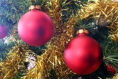 Red Christmas Decorations And Gold Tinsel. A close up of two red christmas bauble decoratoins and gold tinsel hanging on a christmas tree Stock Photography