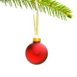 Red christmas ornament. Shiny red christmas ornament hanging from evergreen branch by gold ribbon royalty free stock photos