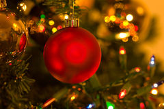 Red christmas ornament in christmas tree Stock Image