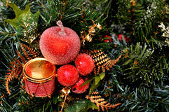 Red Christmas ornament hanging on a Christmas tree Stock Images