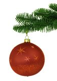 Red Christmas Ornament On Noble Pine Tree Bough. Red Christmas Ornament On Green Noble Pine Tree Bough ~ Isolated On White Royalty Free Stock Photography