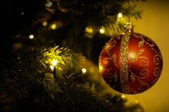 Red Christmas ornament on tree stock images
