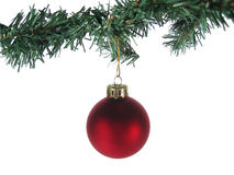 Red Christmas Ornament and tree Isolated Royalty Free Stock Photos