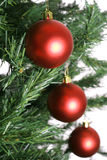 Red christmas ornaments on tree in a line. Shot of a red christmas ornaments on tree in a line Royalty Free Stock Photography