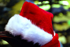 Red Christmas SantaClaus cap Royalty Free Stock Photo