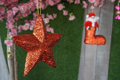 Red christmas star Stock Image