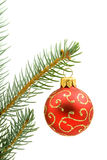 Red Christmas tree ball Royalty Free Stock Photos