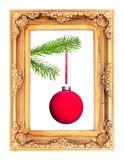 Red Christmas tree ball at a fir branch in a picture frame. Isolated before white Stock Images