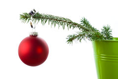 Red Christmas tree bauble. Hanging on pine tree branch isolated on white background Stock Photography