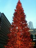 Red Christmas tree San Francisco Royalty Free Stock Photography