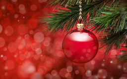 Red Christmas Tree Scene Background. A red christmas ornament hanging from a tree with red lighting and bokeh in the background. Please see my extensive royalty free stock photography
