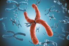 Red chromosome. 3d rendering red chromosome on blue background royalty free stock photography