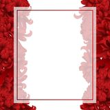 Red Chrysanthemum, Kiku Japanese Flower Banner Card. Vector Illustration.  vector illustration