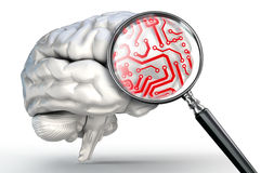Red circuit on magnifying glass and human brain. On white background vector illustration