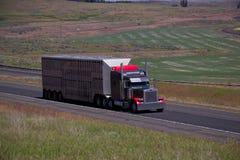 Free Red Classic Peterbilt / Livestock Trailer Royalty Free Stock Image - 95063146