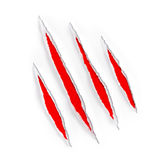 Red claw scratches marks on torn paper. Animal claw scratches marks on paper Stock Photo