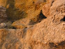 Red clay. This is red clay, immortalized at sunset. This panorama was photographed on the Lido di Cincinnato, near Anzio, Italy. People use this clay to beauty Royalty Free Stock Photo