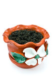 Red clay flowerpot with soil. On white royalty free stock photography