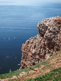 Red cliff of Helgoland Royalty Free Stock Photos
