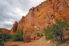 Red Cliffs in a Desert Canyon Royalty Free Stock Photo