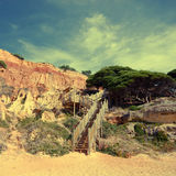 Red cliffs, pine and wooden staircase(Algarve,Portugal) Royalty Free Stock Photography