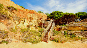 Red cliffs, pine and wooden steps(Portugal) Stock Image