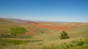 Red Cliffs in Wyoming Royalty Free Stock Photo