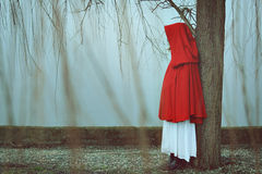 Red cloak woman in misty day. Woman with red cloak in misty and foggy day . Sadness conceptual stock photos