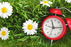 Red clock on green grass with flowers Royalty Free Stock Photo