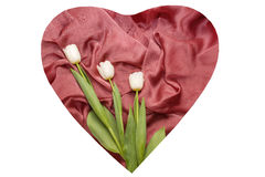 Red cloth with folds and white tulips on it Stock Photography