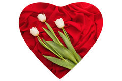 Red cloth with folds and white tulips on it Stock Photo