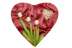 Red cloth with folds and white tulips on it Stock Image