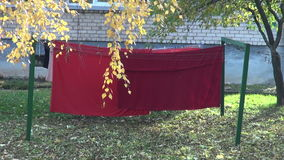 Red clothes in autumn yard stock video footage