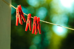 Red clothes pegs on string outdoor. Stock Photography