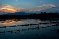 red cloud at dusk in the silhouette mountain and swamp stock photos