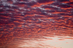 Red clouds Royalty Free Stock Photo