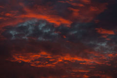 Red clouds on sky Stock Photography