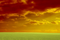 Red cloudy. Landscape. Green field. Panorama stock image