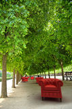 Red club sofas in  a garden. Red leather club sofas in a formal garden Stock Image