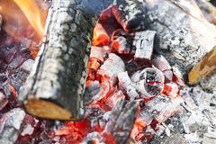 Red coals in the fire Royalty Free Stock Photo