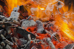 Red coals Stock Image