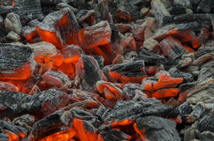 Red coals Royalty Free Stock Image