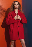 Red coat. Beautiful elegant young woman wearing red topcaot Stock Photography