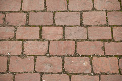 Red cobbles in the street Royalty Free Stock Photos