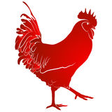 Red cock. Symbol of Chinese New Year. Vector illustration. In full growth Royalty Free Stock Images