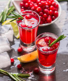Red cocktail  with fresh cranberries, lemon, rosemary and vodka Royalty Free Stock Images
