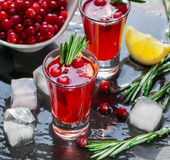 Red cocktail  with fresh cranberries, lemon, rosemary and vodka Stock Photo