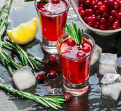 Red cocktail  with fresh cranberries, lemon, rosemary and vodka Stock Photos