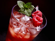 Red cocktail  and mint on dark background Royalty Free Stock Image